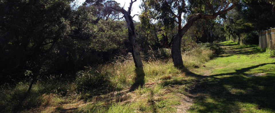 sunshine reserve walking trails